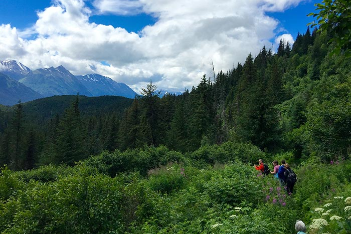 Hiking Alaska's Kenai Peninsula