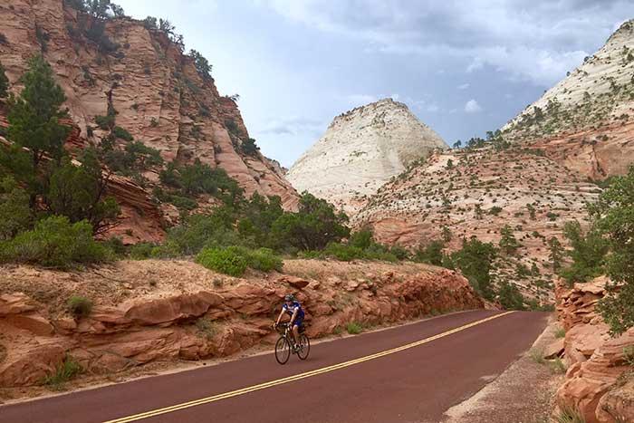 Zion Family Bike Tours
