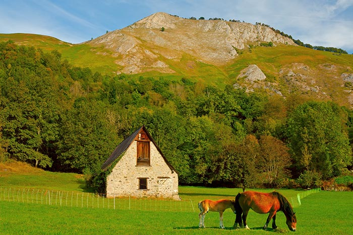 Horses - Backroads Basque Country Family Multisport Tours