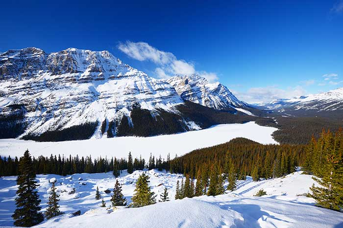 Peyto Lake in Winter - Bow Summit Overlook, Icefields Parkway