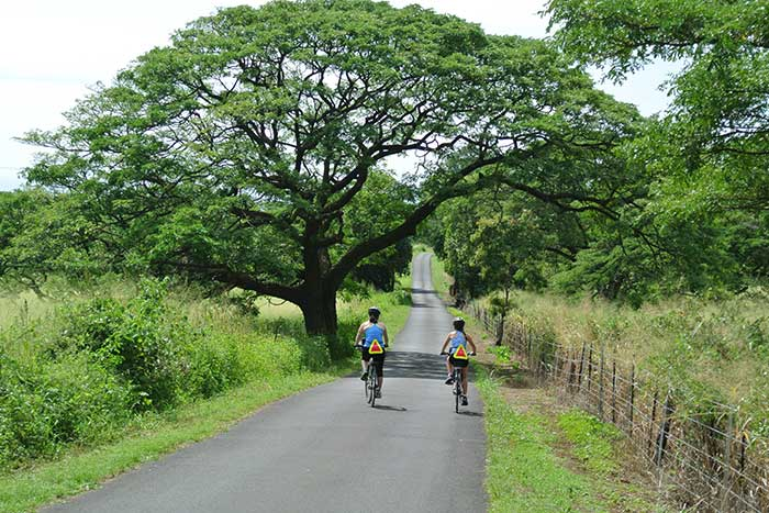 Cycling on Backroads Hawaii's Big Island Family Multi-Adventure Tour