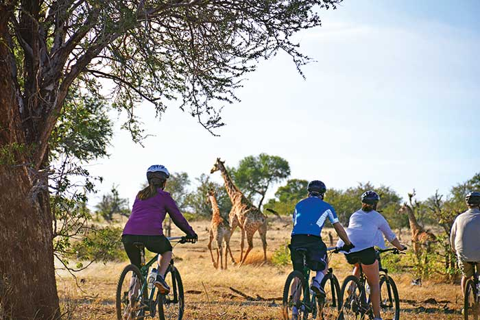 Backroads South Africa & Botswana Family Breakaway Multisport Adventure Tour
