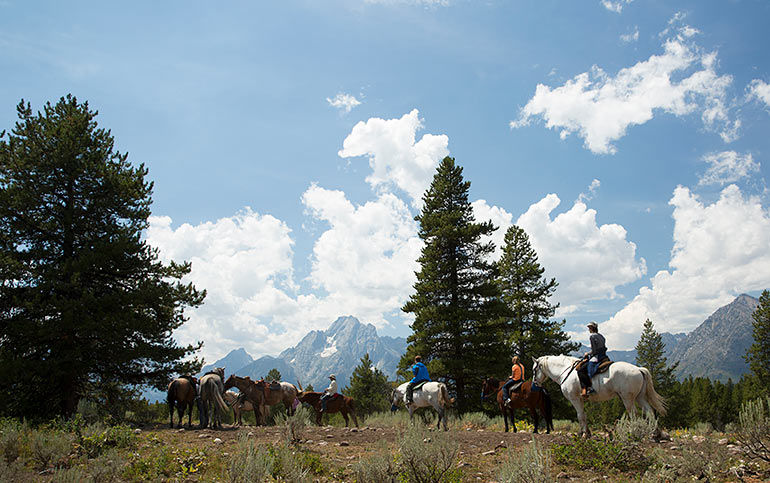 Backroads Yellowstone & Tetons Multisport Adventure Tour