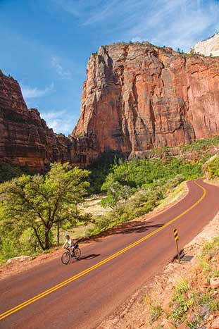 Cycling in Zion Canyon