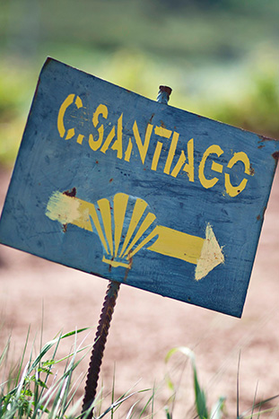 Camino Frances - The French Way - Camino de Santiago Trail