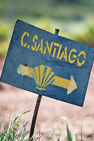Camino de Santiago - French Pyrenees & Spain's Rioja Region Walking Tour