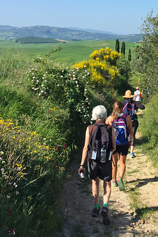 Hiking- Backroads Tuscany Active Culinary Walking Tour