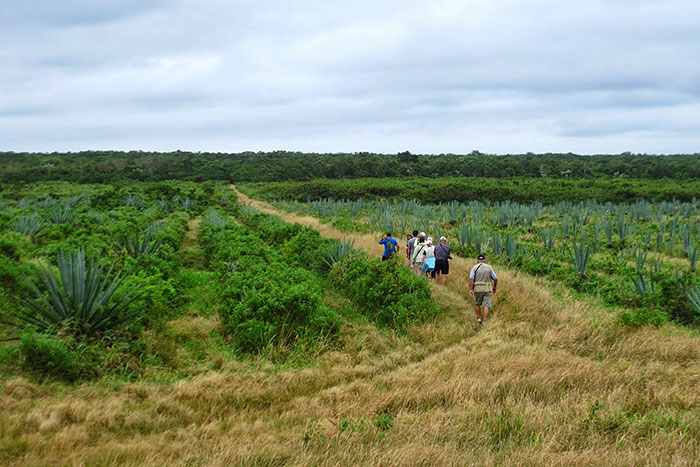 Cuba Walking & Hiking Tour