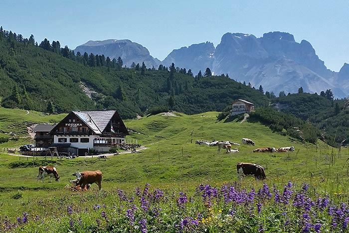 Dolomites Family Hut-to-Hut Hiking Tour