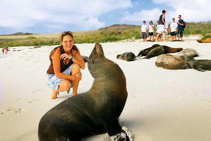 Seals - Galapagos Islands Walking Tour
