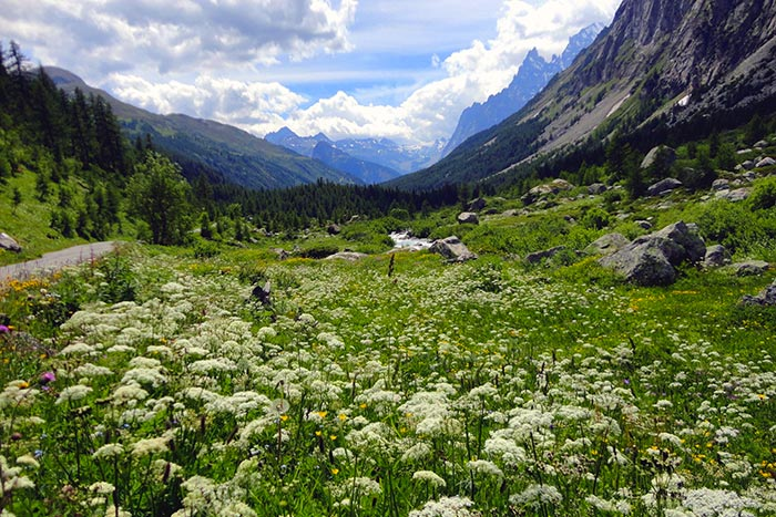 Backroads French & Italian Alps Family Breakaway Walking & Hiking Tour
