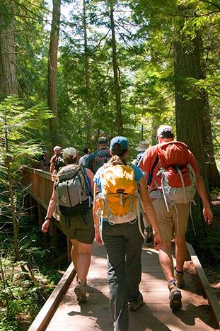 Hiking - Backroads Glacier & Waterton Lakes Walking & Hiking Tour