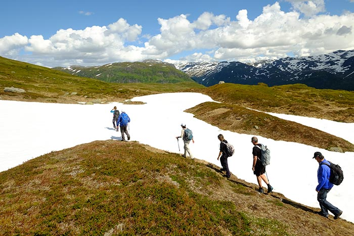 Norway Family Walking & Hiking Tour