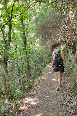 Backroads Piedmont to Portofino Walking & Hiking Tour