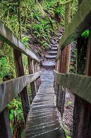 Hiking in the San Juan Islands, Washington