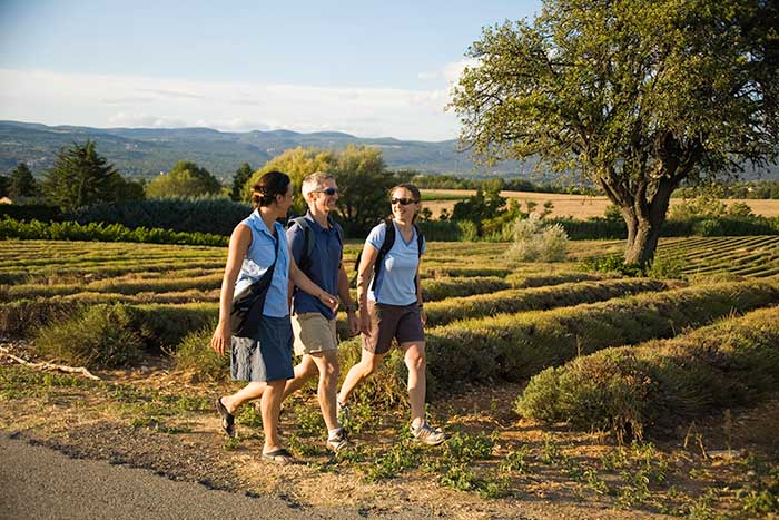 Walking on Backroads Provence Active Culinary Walking Tours