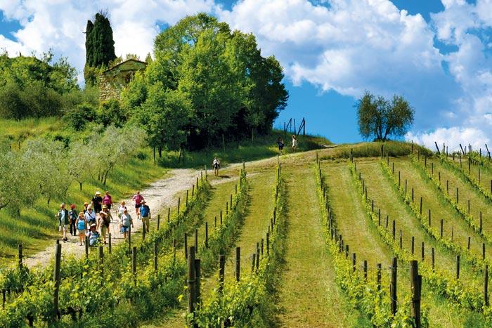 Tuscany Family Hiking
