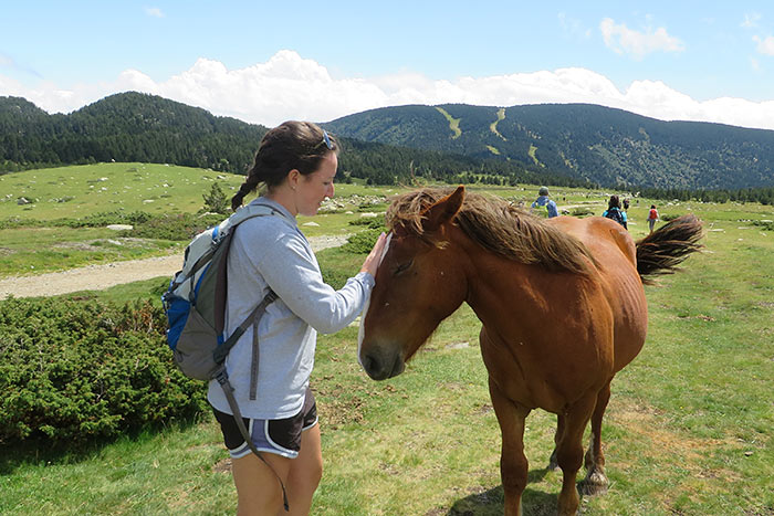 Horse - Costa Brava to Spanish Pyrenees Walking & Hiking Tour