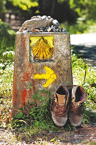 El Camino de Santiago Trail