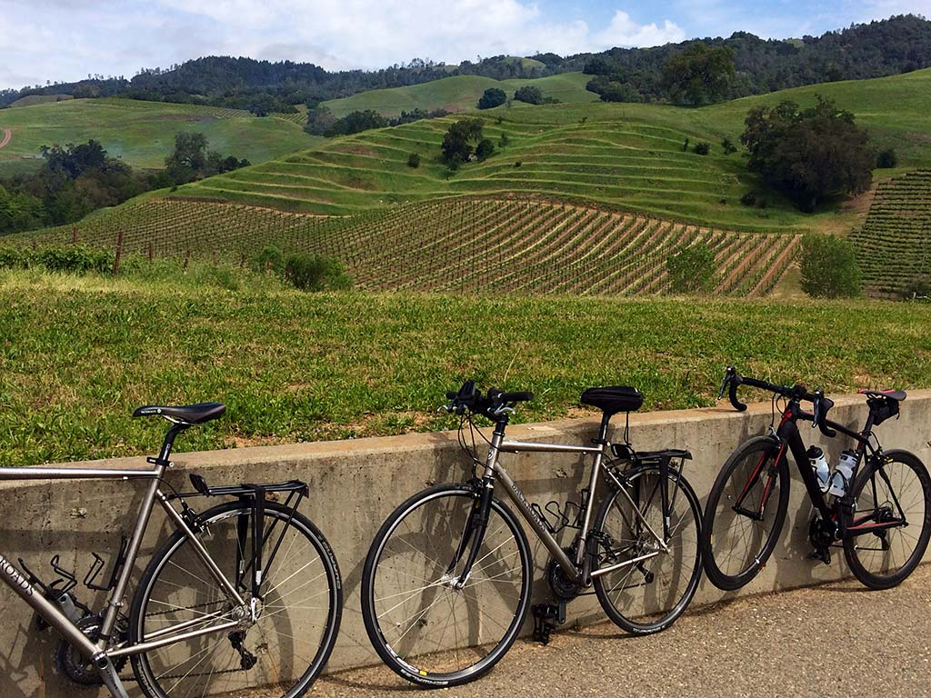 Biking Sonoma Wine Tour