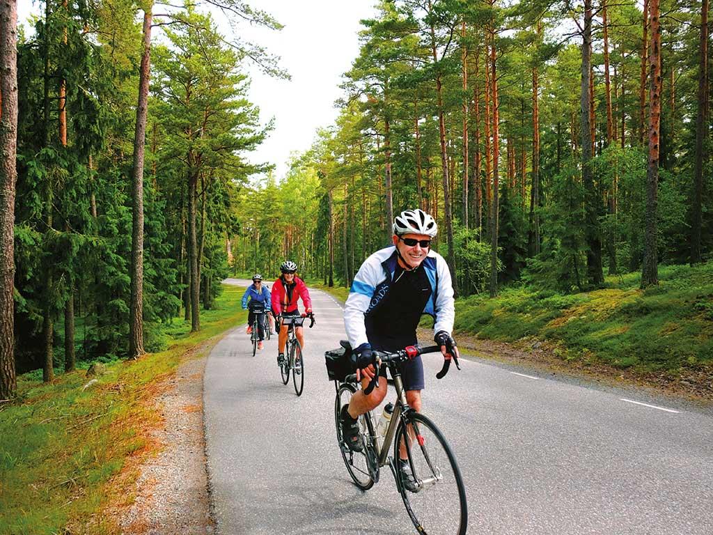 349364e7e Stockholm-Copenhagen Bike Tours