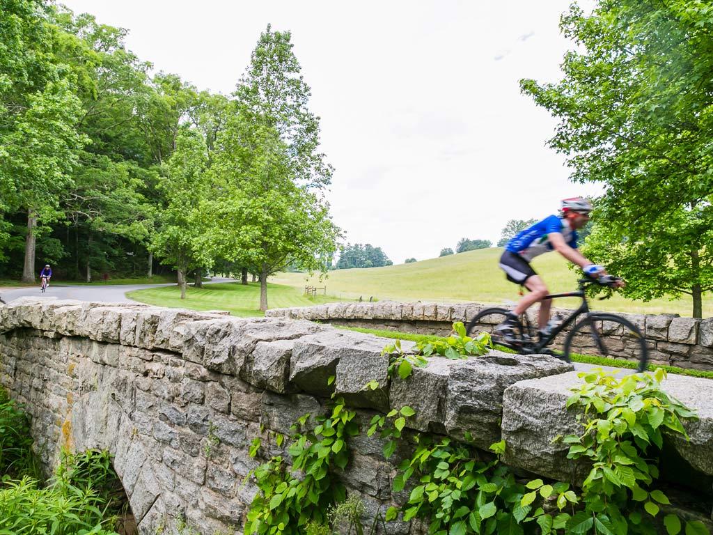 Biking Tours In South Carolina