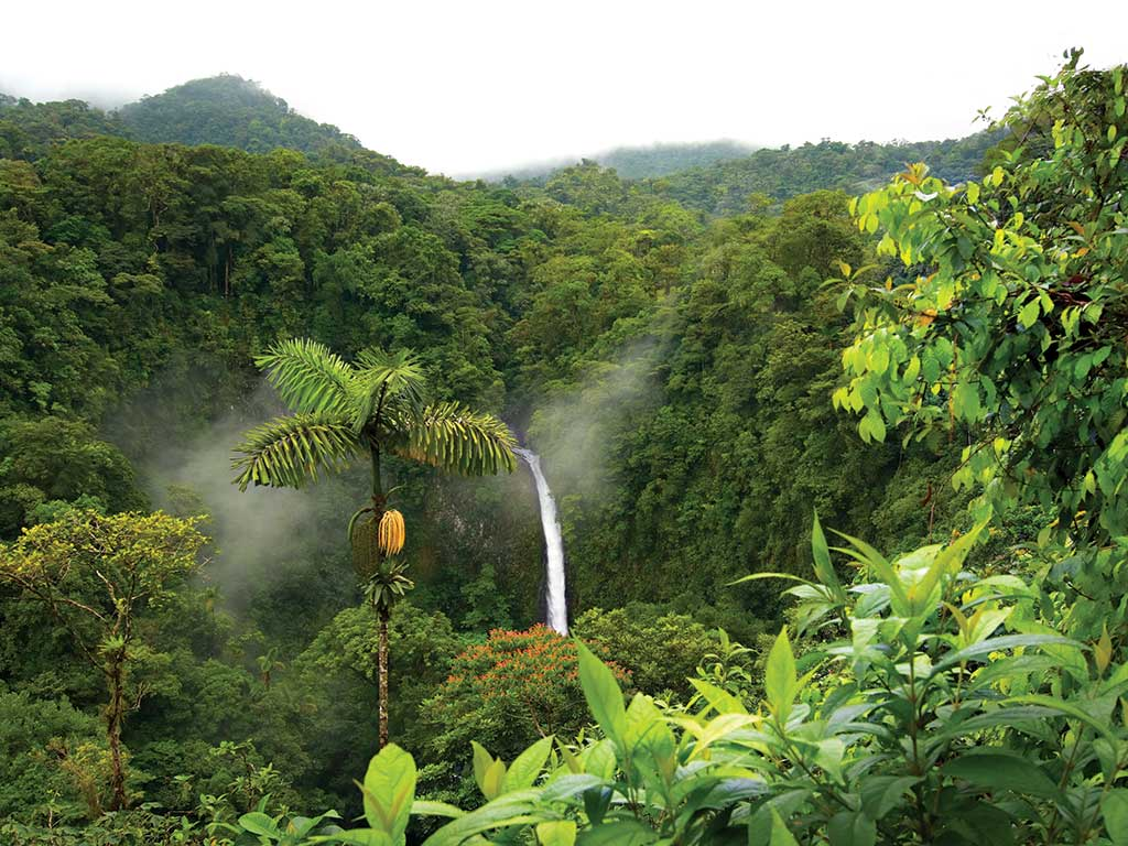 Backroads Tours To Costa Rica