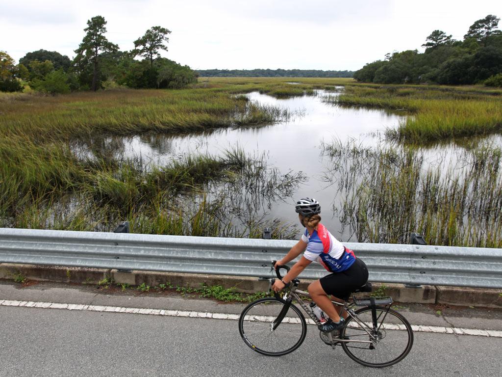Charleston Savannah Bike Tour