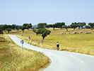 Biking in the Countryside of Portugal, Backroads