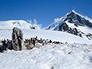 Penguins - Antarctica Ocean Cruise Multi-Adventure Tour