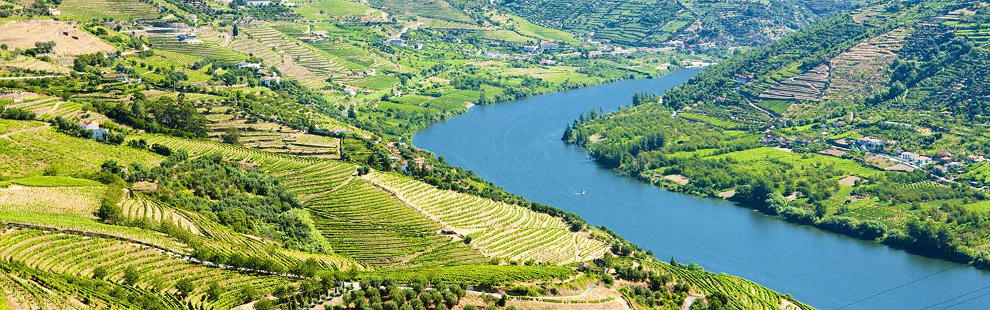 Douro River Valley - Backroads Portugal Walking & Hiking Tour