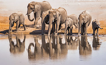 Namibia and Zimbabwe walking tours