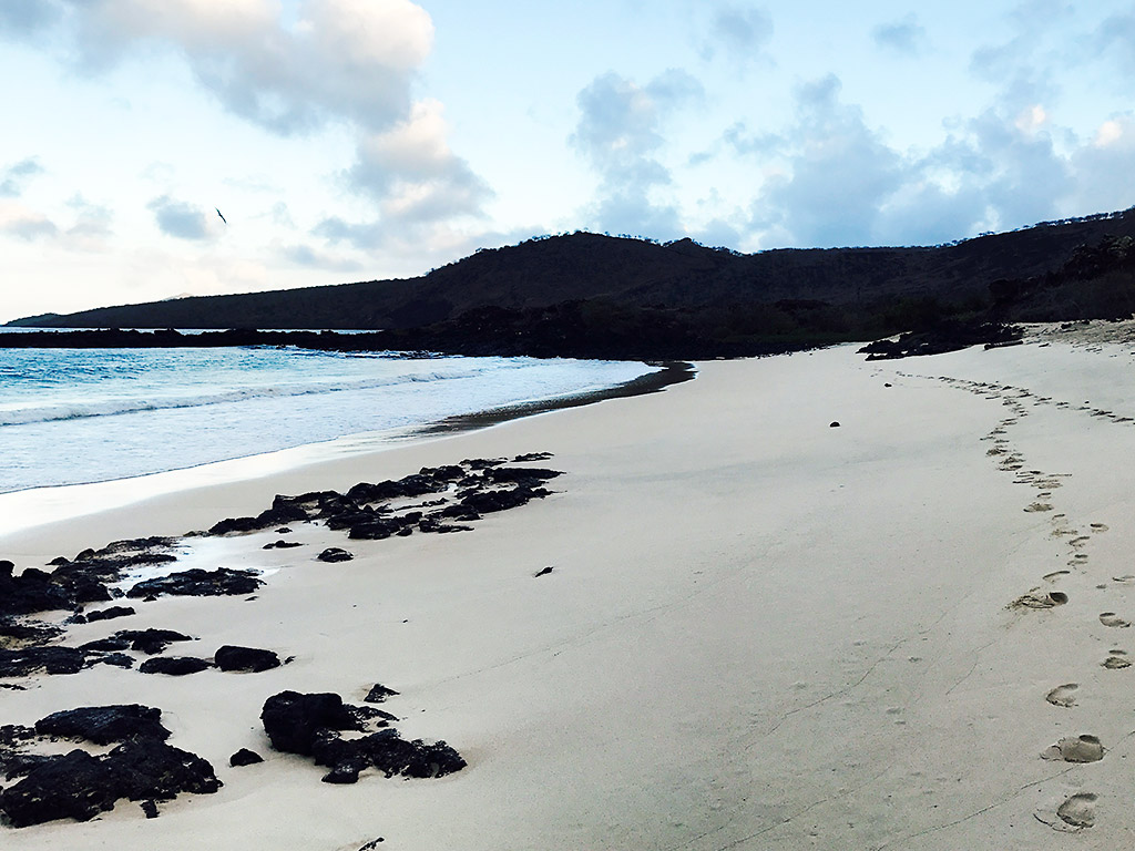 Beach - Galapagos Ocean Cruise Multi-Adventure Tour