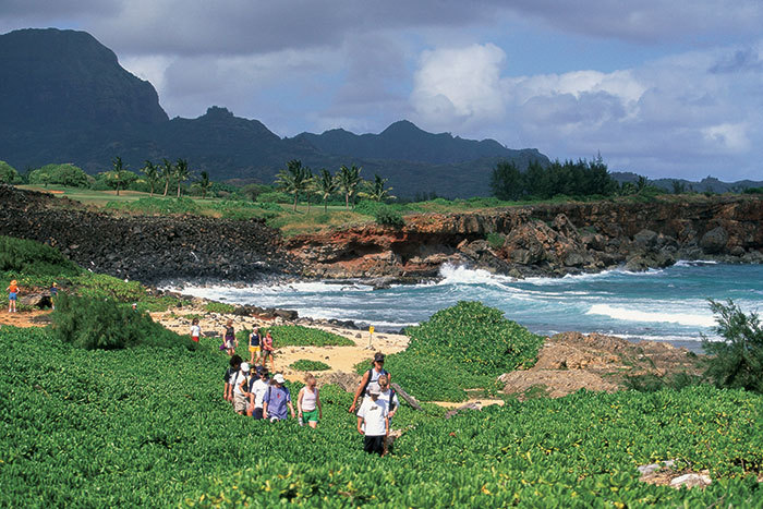 Kauai Family Multi-Adventure Tour - Teens & Kids