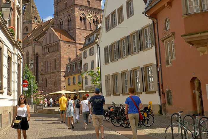 Rhine River Cruise Family Bike Tour