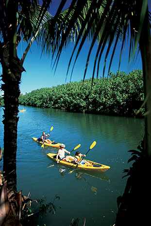 Kayaking - Kauai Family Multi-Adventure Tour - Older Teens & 20s