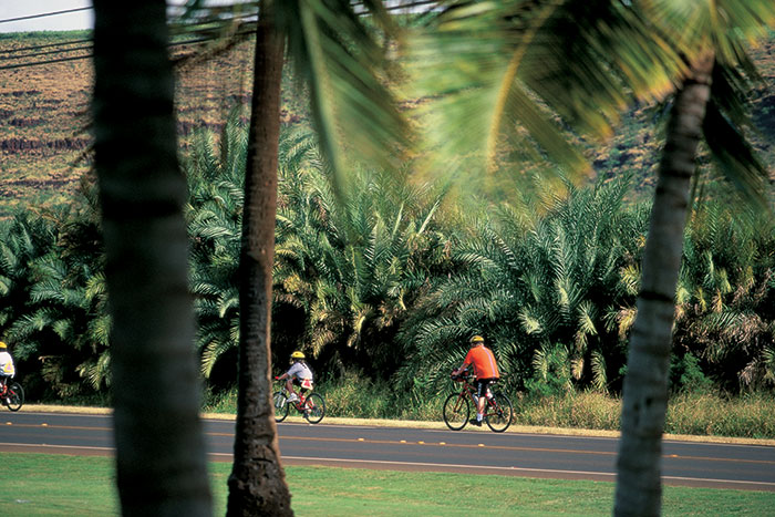 Biking, Kauai Family Multi-Adventure Tour - Teens & Kids