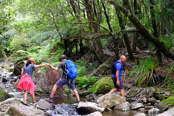 Hiking - New Zealand Ocean Cruise Multi-Adventure Tour