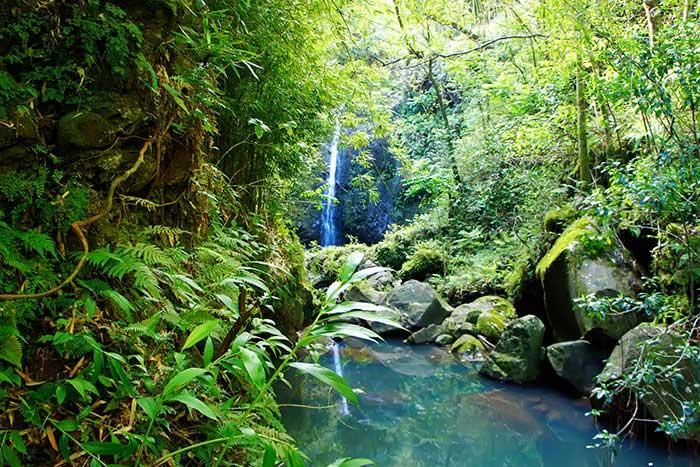 Road to Hana Waterfall - Maui Family Multi-Adventure Tour – Older Teens & 20s