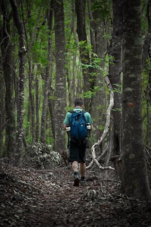 Hiking, Maui Family Multi-Adventure Tour – Older Teens & 20s