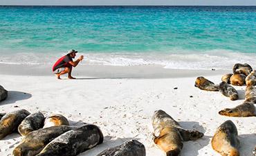Galapagos Ocean Cruise