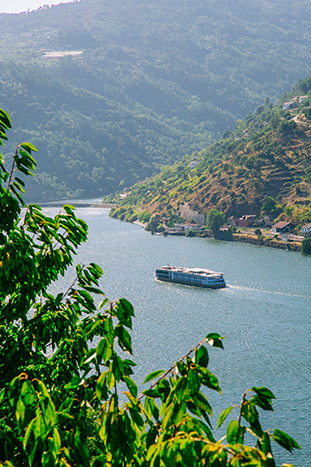 Douro River Cruise in Portugal