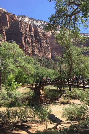 Bryce, Zion & Grand Canyon Family Multi-Adventure Tour - 20s & Beyond | Backroads