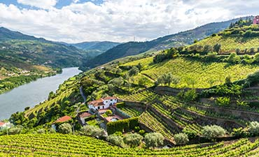 Portugal's Douro River Cruise Family Bike Tour - 20s & Beyond