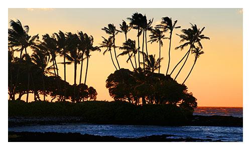 Hawaii's Big Island Family Multisport Tours