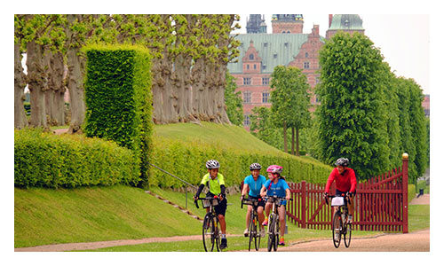 Stockholm to Copenhagen Family Biking Tours