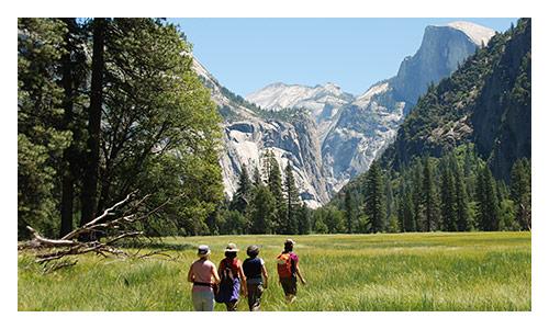 Yosemite Walking and Hiking Tour