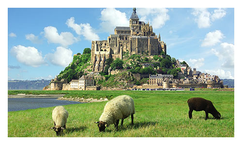 Brittany and Normandy Family Bike Tours