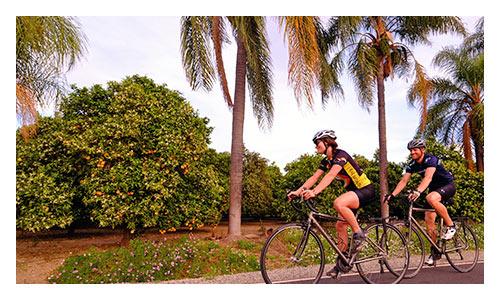 Santa Barbara and Ojai Valley Bike Tours